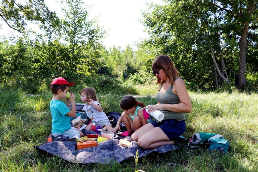 TOP 5 des balades gratuites à faire avec les enfants !