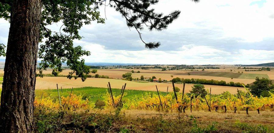 48h en terre bourguignonne dans le Haut Nivernais Val d'Yonne